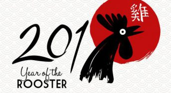 新年快乐: 2017 year of the fire rooster, active, brilliant and just a bit 'cocky'