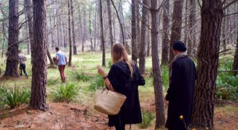 Mushroom hunting: a new Easter tradition & it's a real doozy