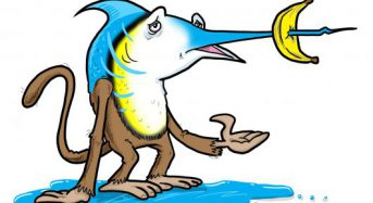 The Art of Creativity: What happens if you cross a monkey and a marlin?
