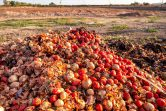 National Food Waste Tax Incentive: Boosting food relief through Australia's tax system
