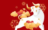 Hardworking and strong: Welcome to the year of the ox
